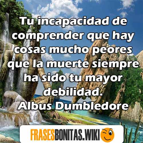 frases de harry potter bonitas