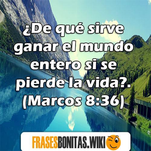 versículo de la biblia