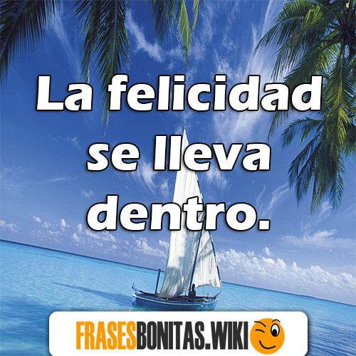 frases de mr wonderful bonitas